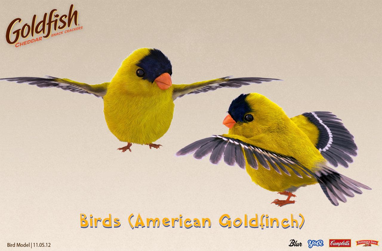 Birds_Template_v01.jpg
