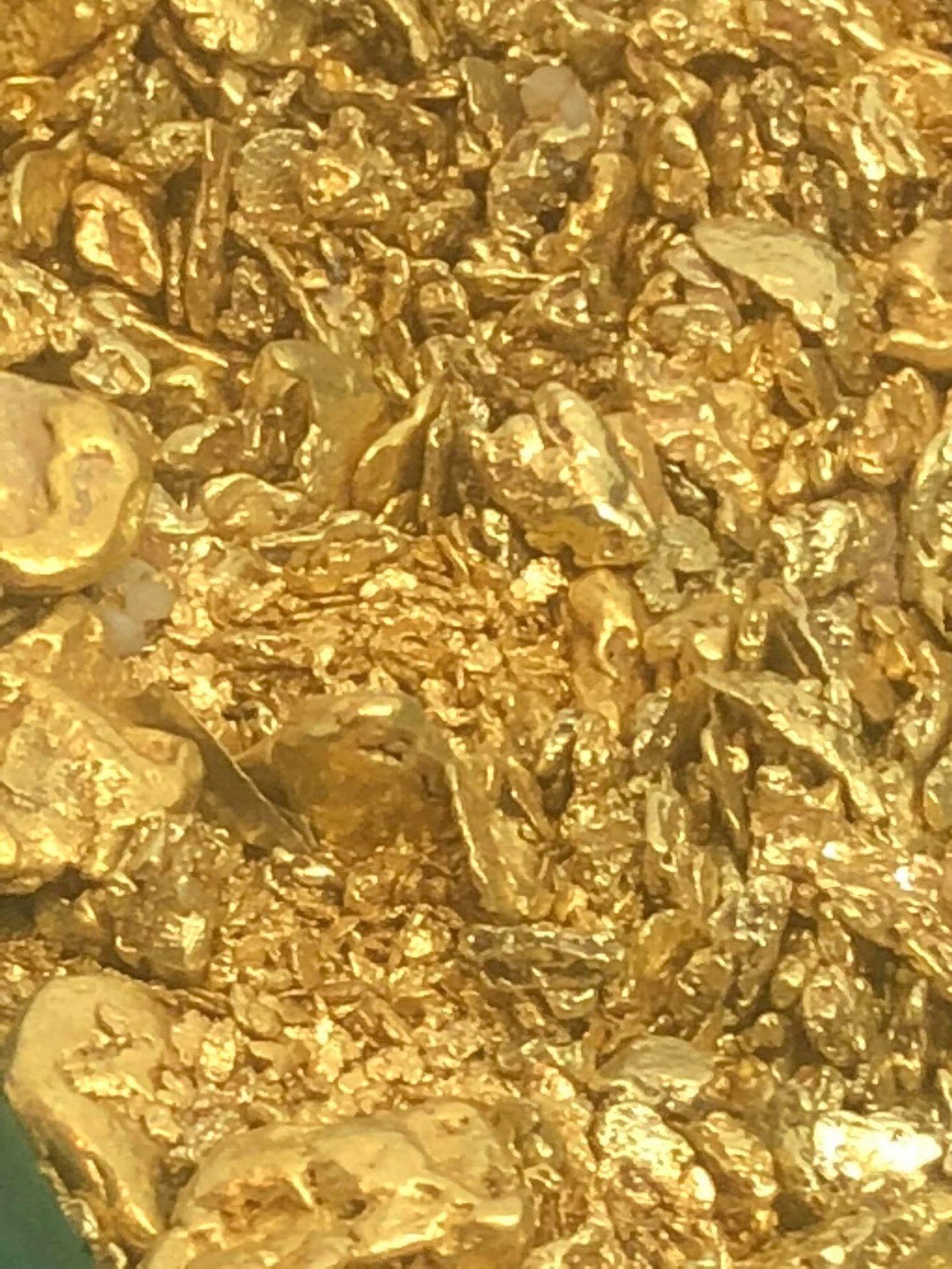 Lynch Mining, LLC GOLD 3 copy.jpg
