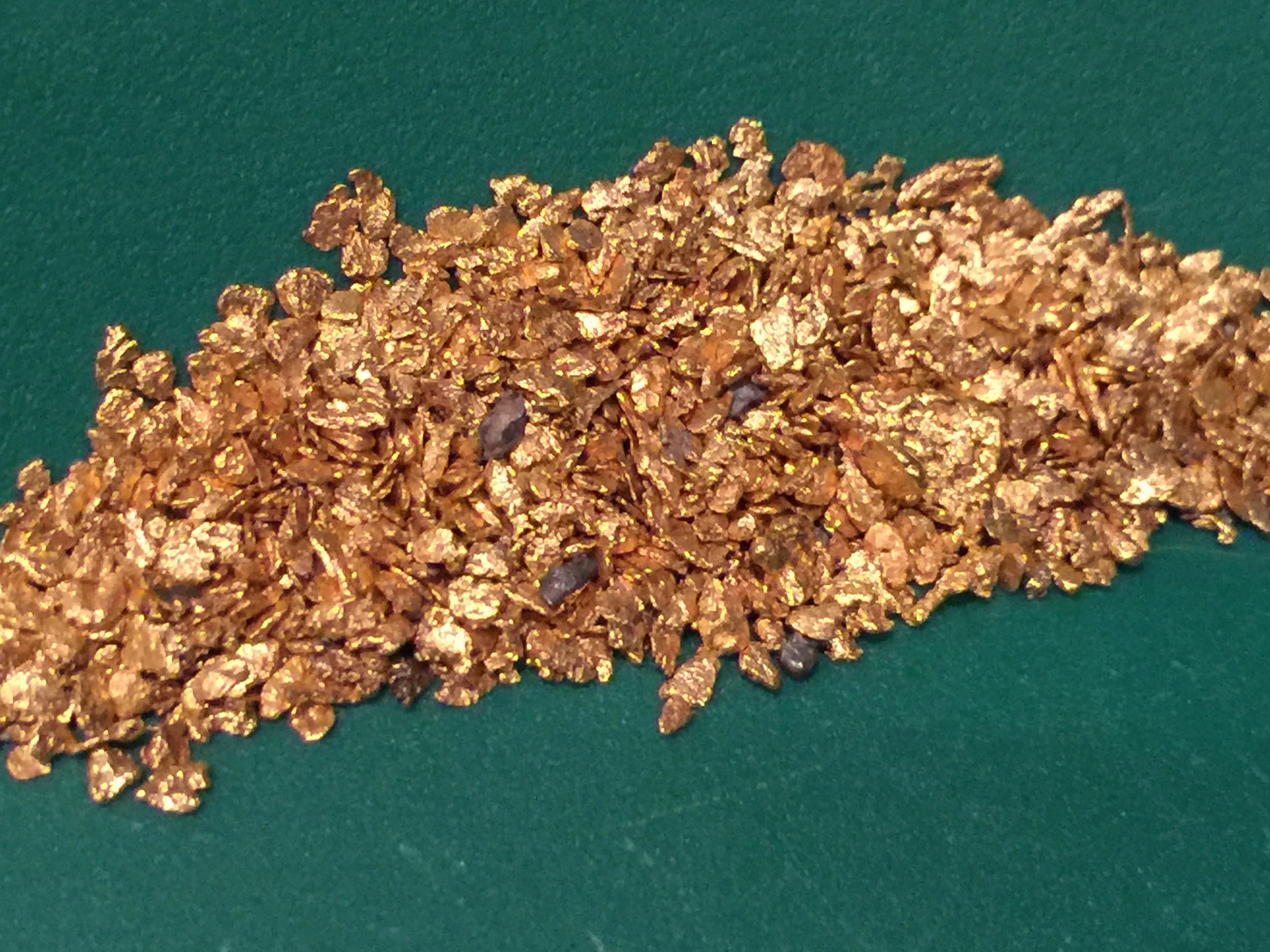 Gold Mining Lynch Minine, LLC.JPG