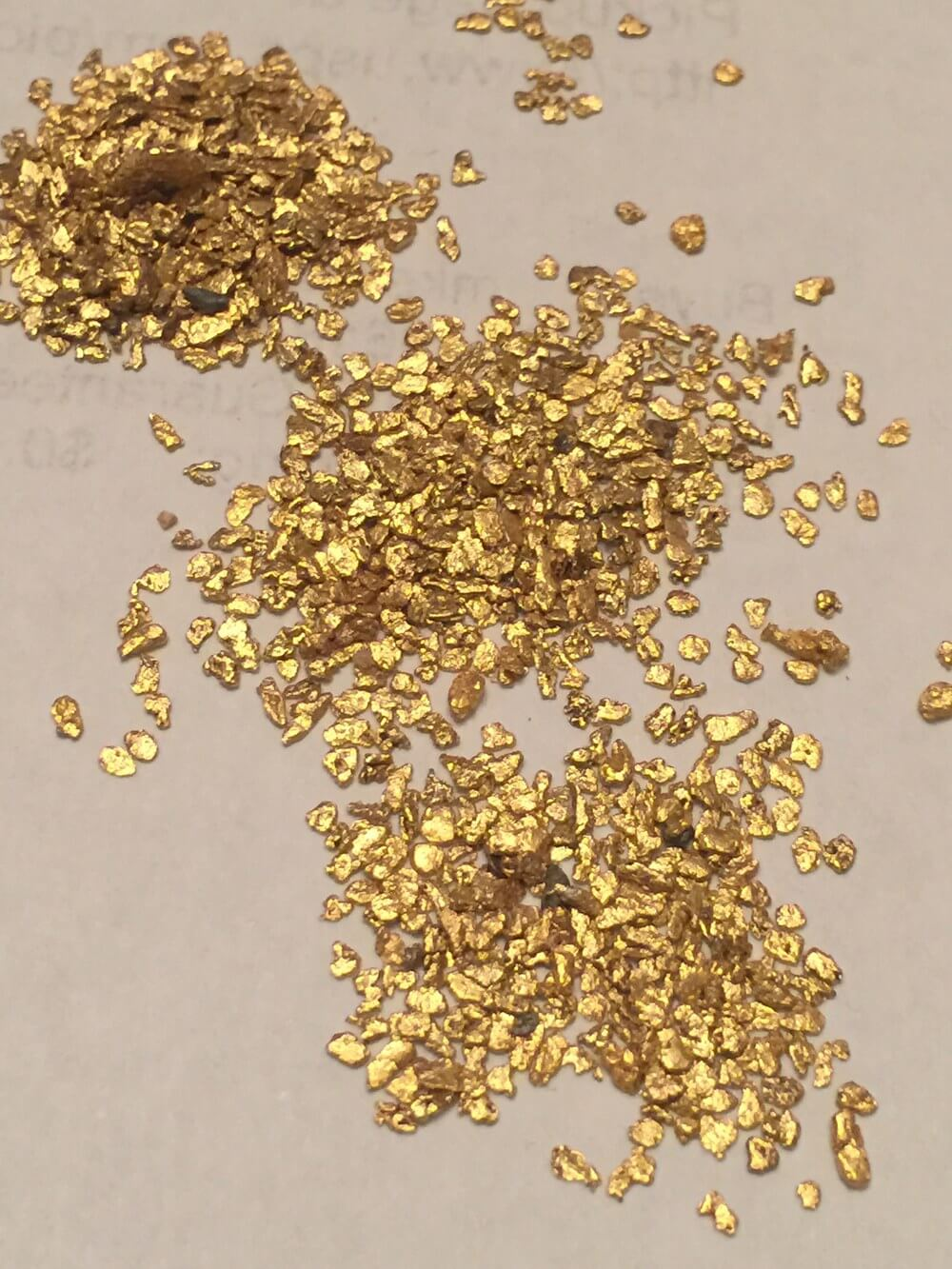 Lynch+Mining+Gold+Paydirt+Pickers.jpg