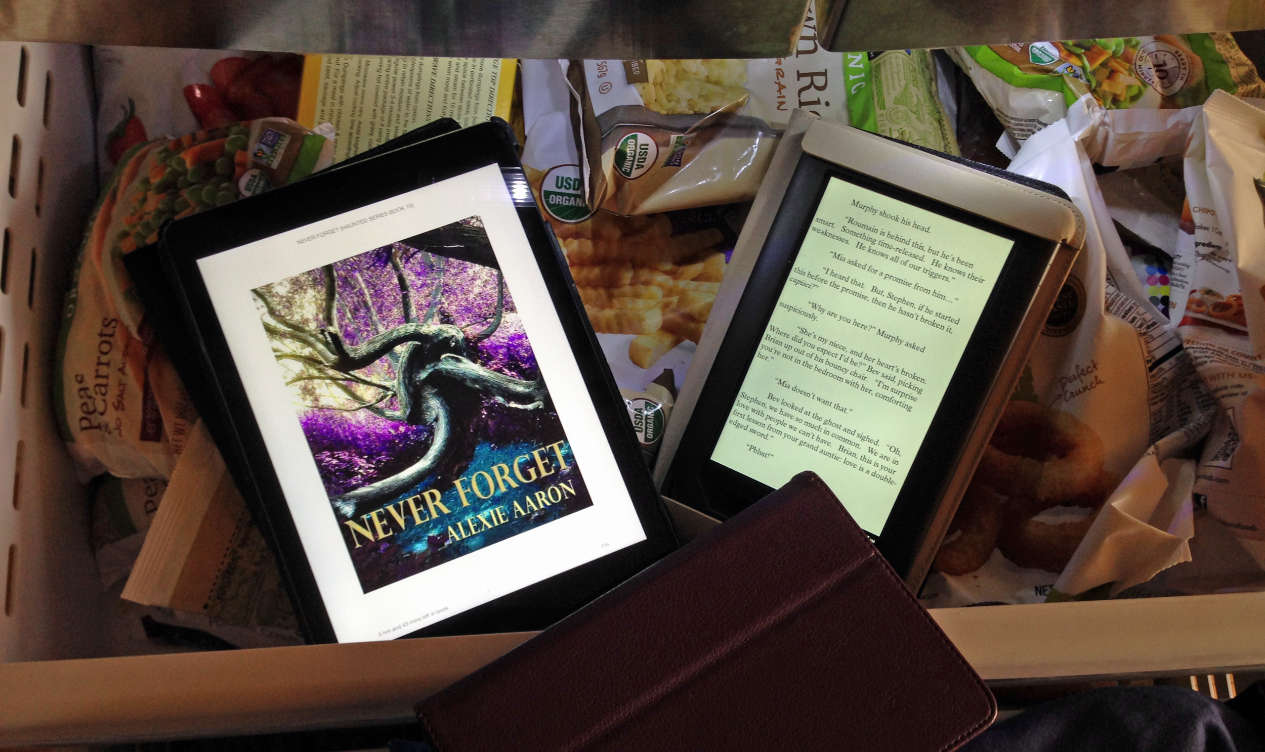 No ereaders have been harmed in the making of this blog post...much.
