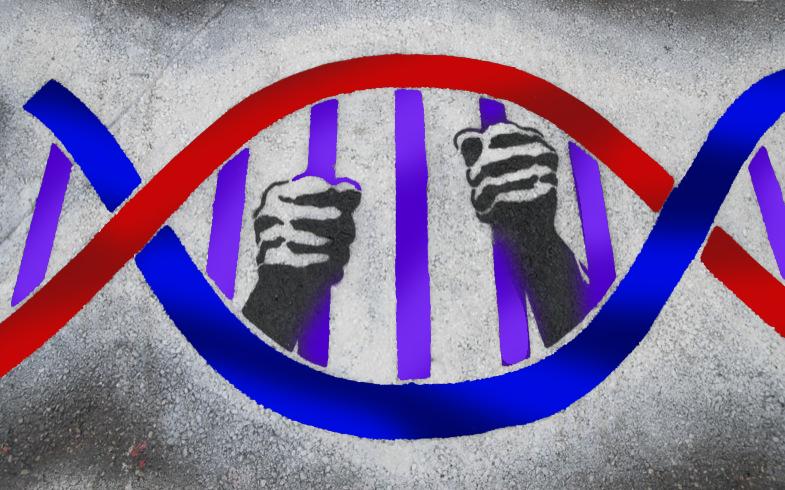 "Episode 84: Criminality and Genetics<a href=""http://www.strideandsaunter.com/new-blog/2016/4/13/episode-84-criminality-and-genetics"">Listen →</a></p>"