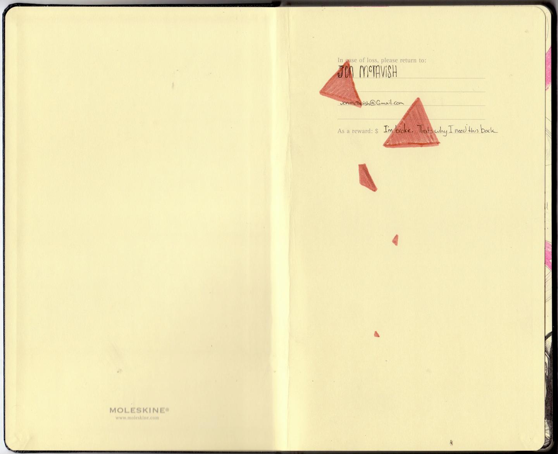Tmoleskin 1.jpg
