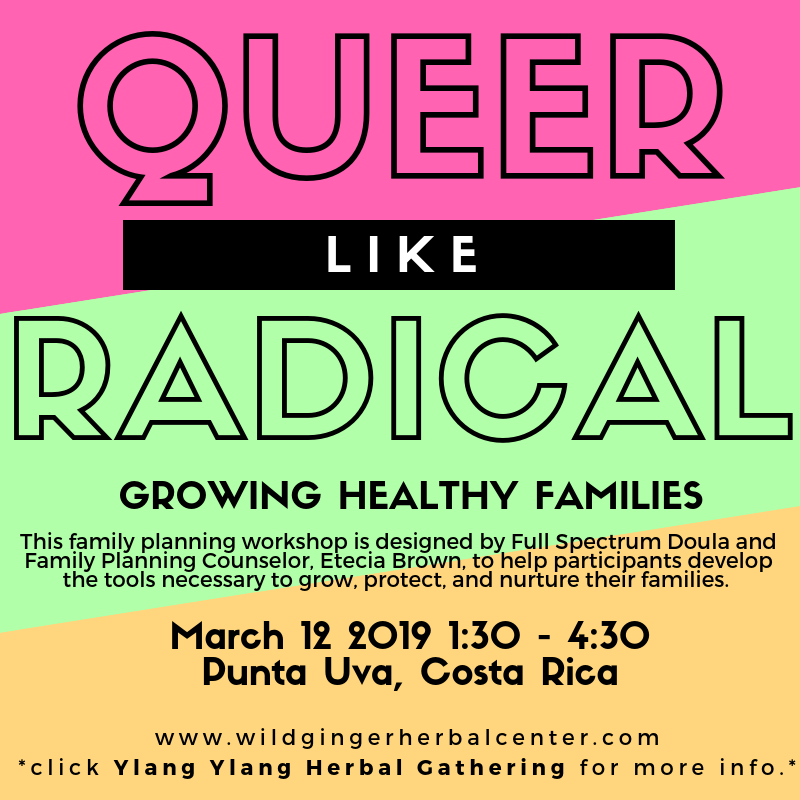 Queer Family Planning Workshop (2).png