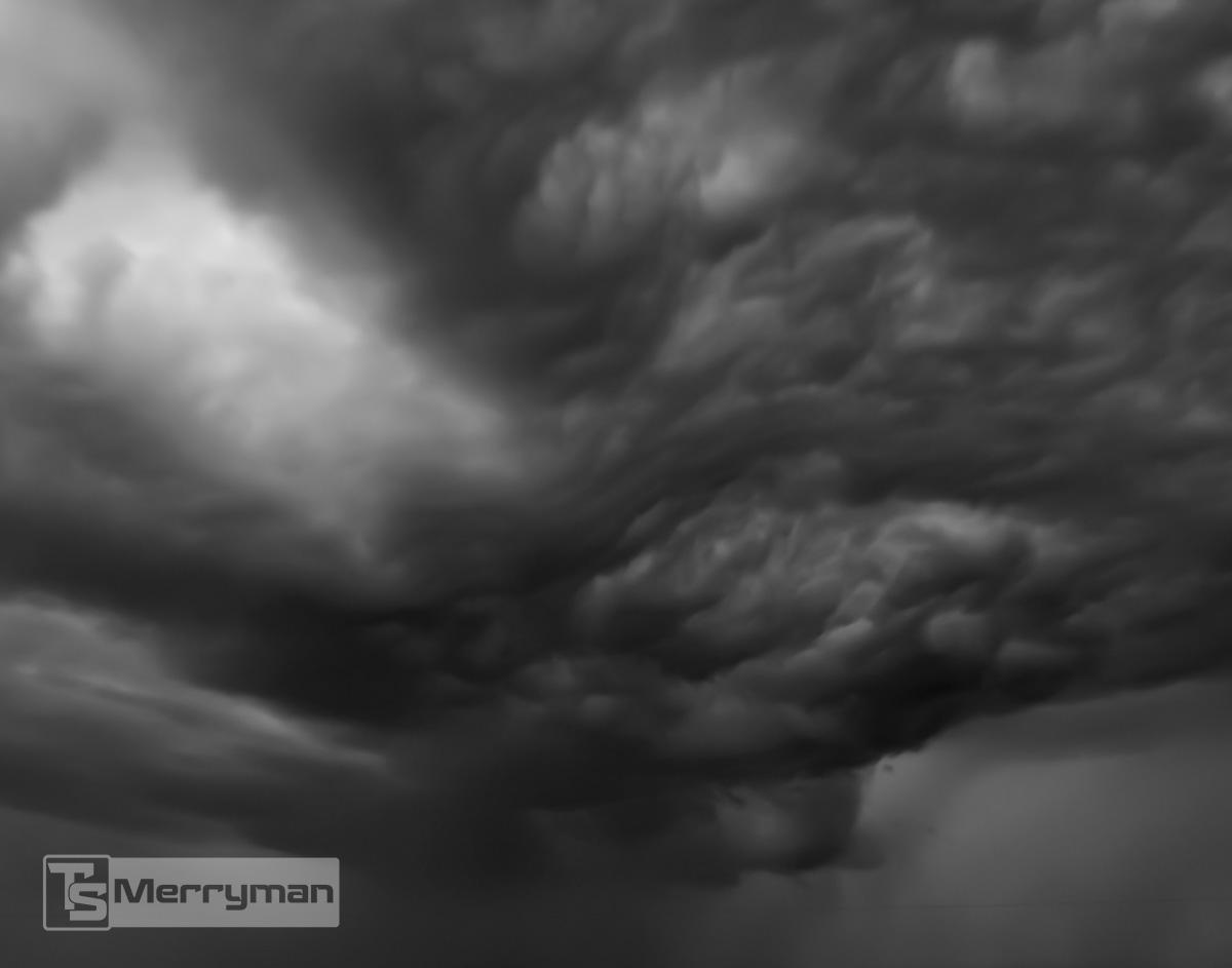 TSMerryman_Nature001.jpg
