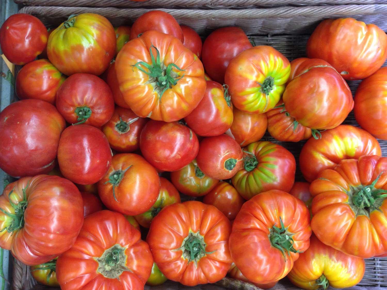 QC-cargese-tomates.jpg