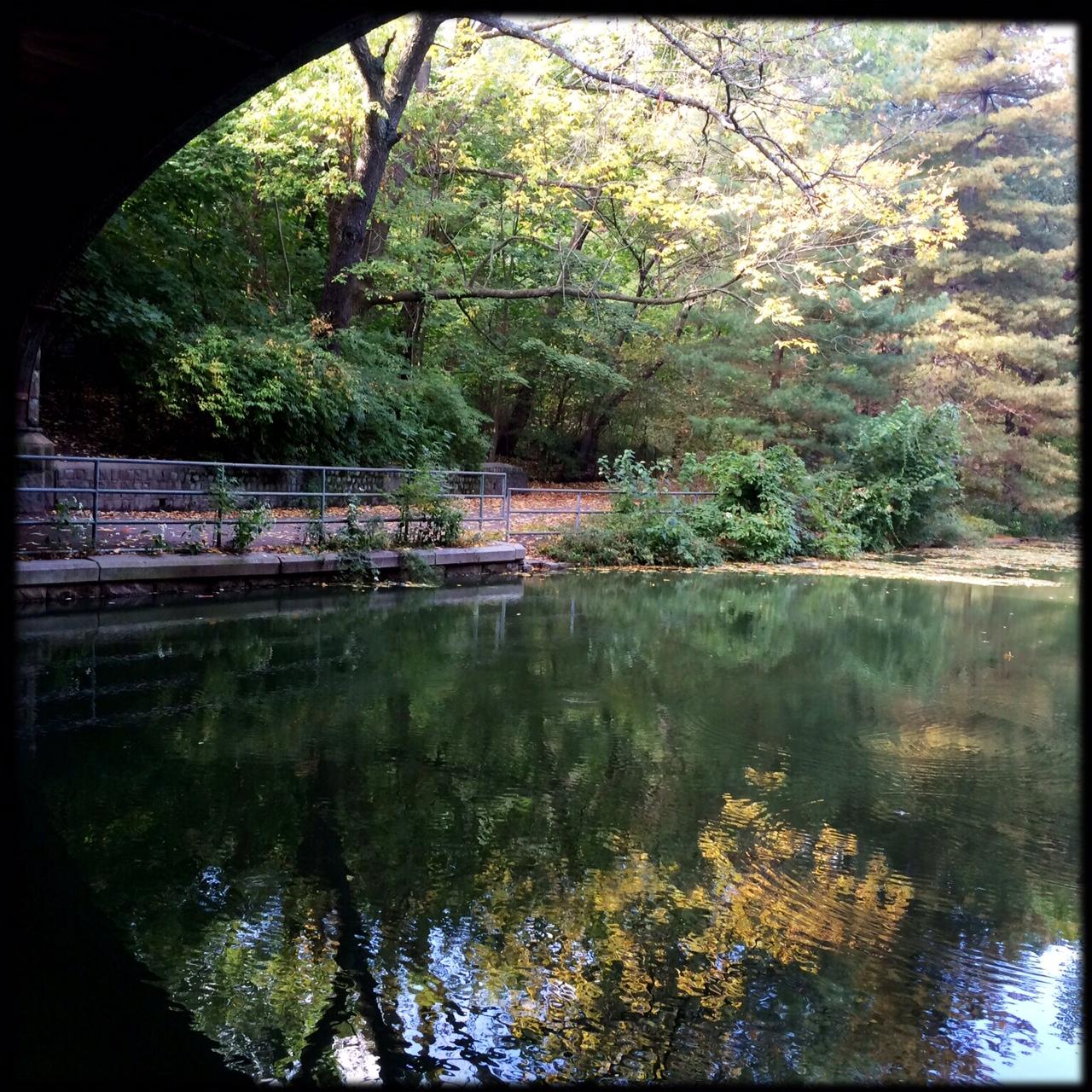 Under an Arch, Prospect Park