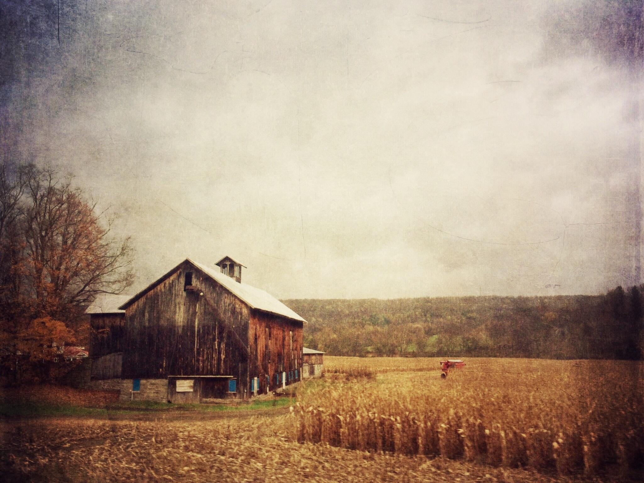 HarvestBarn.JPG
