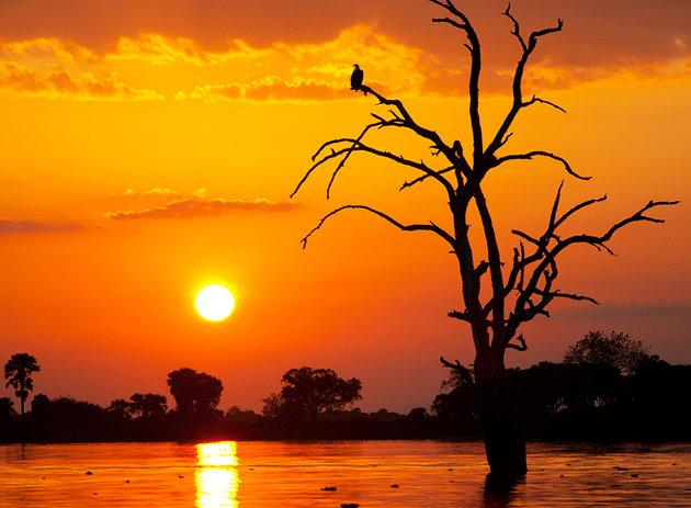 tanzania-selous-game-reserve.jpg