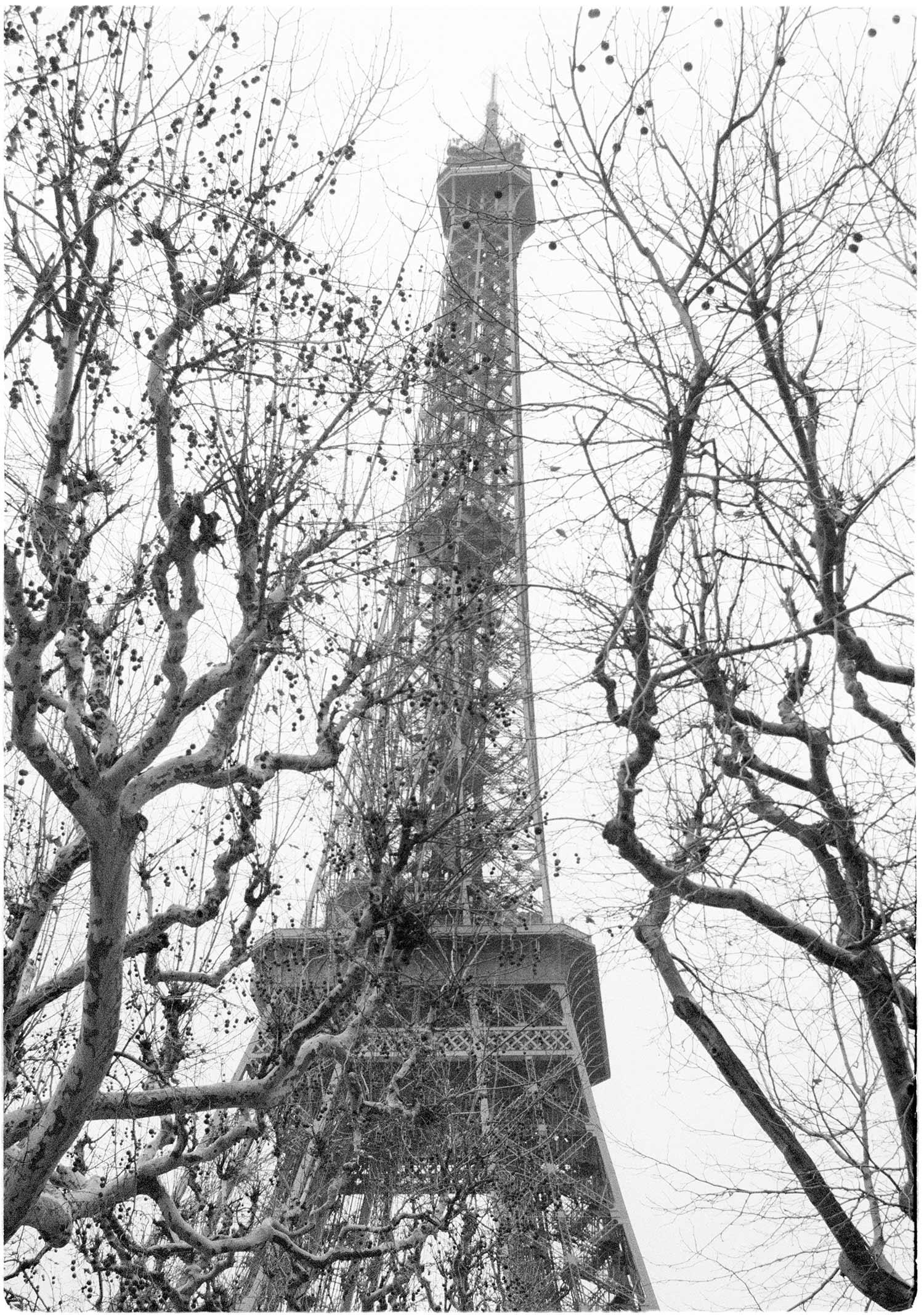 Eifel-Tower-web.jpg