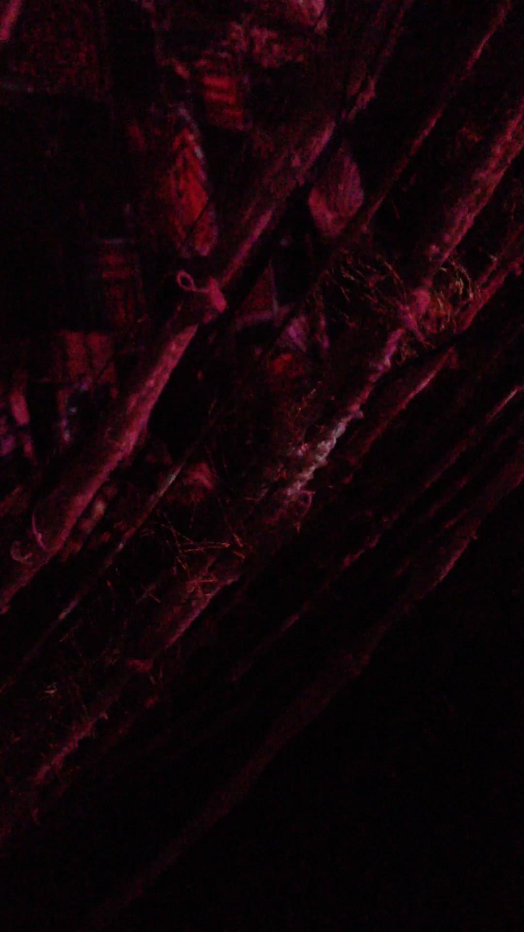 nightweave2still3.jpg