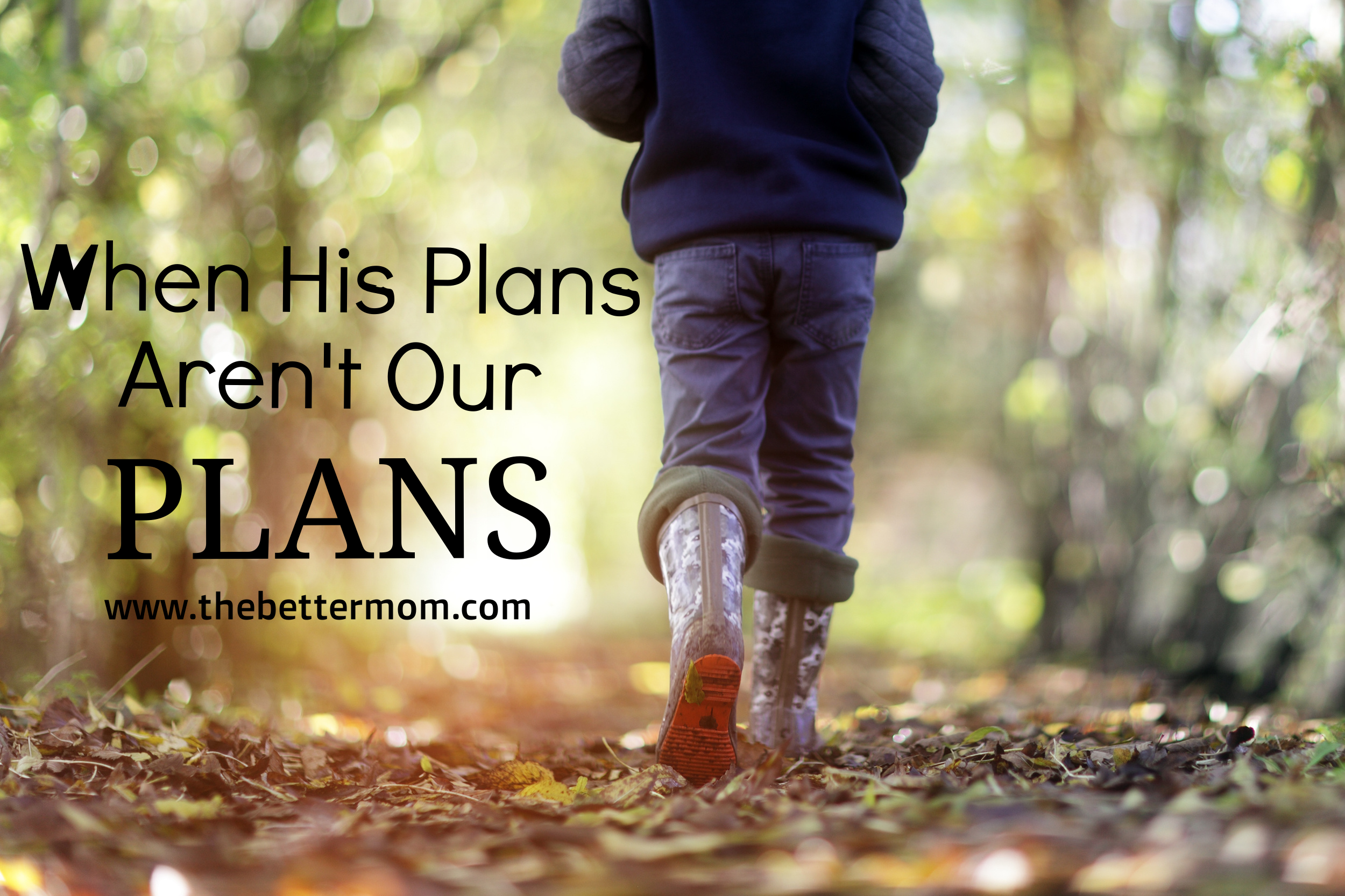 Often, our plans don't align with what God has for us, or somewhere along the way, as things change, we realize the outcome is not anything like we'd imagined. Can you still trust God when things go horribly wrong? If you are questioning, wrestling, or wondering about how your own life circumstances fit into God's plan, this post is for you.