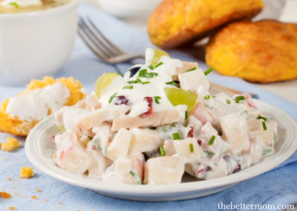 This delightful  Turkey, Cranberry & Apple Salad  is made using Greek yogurt, which not only gives it a tasty tang, but also a healthy dose of probiotics in every delicious bite!