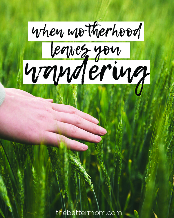 Are you wandering as a mom? Do you look for guidance everywhere only to be turned as many directions? God wants to lead your every step- here's how following him can make your motherhood journey clear...