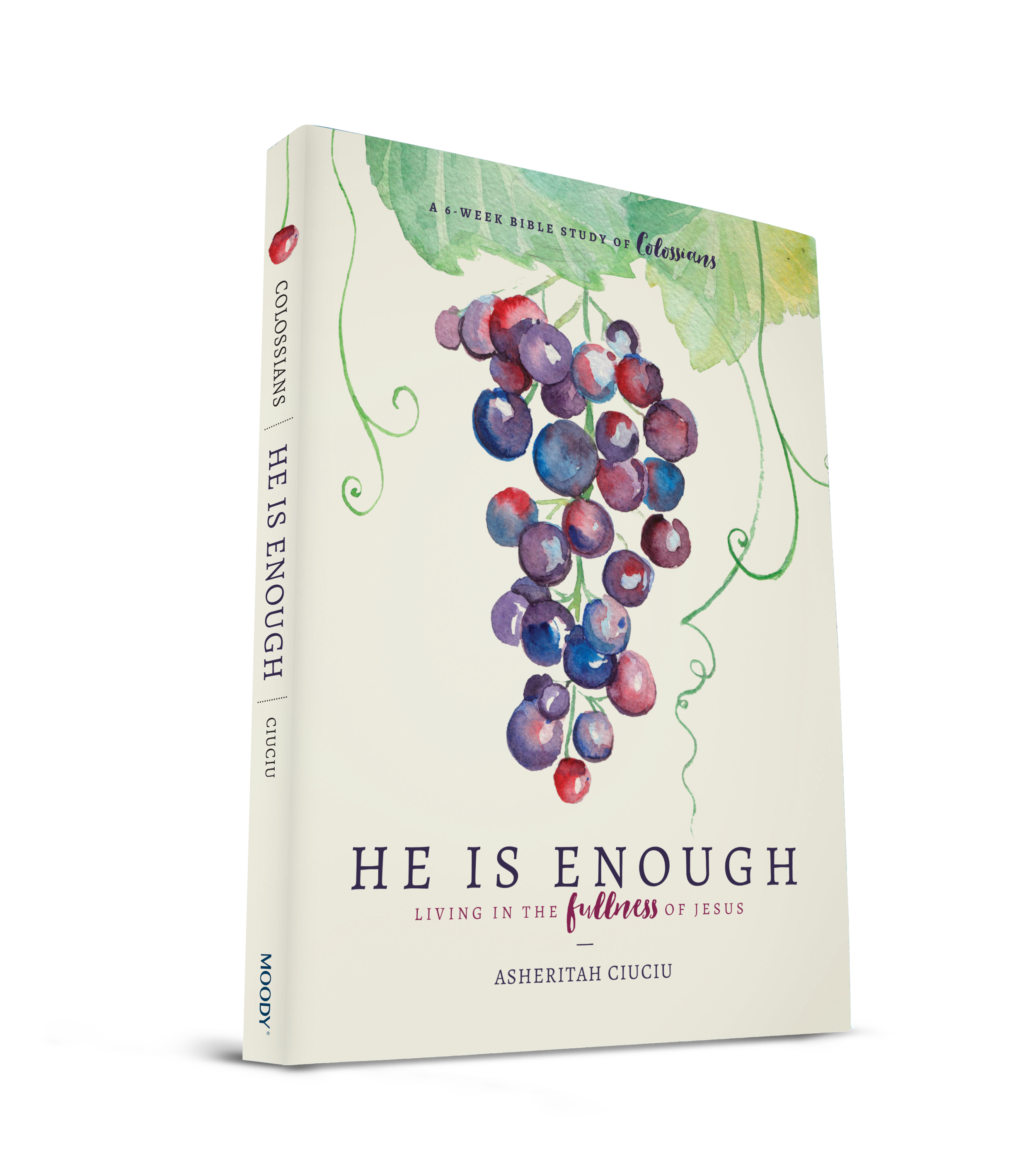 "Do you struggle to feel ""holy"" enough? Feeling like you need to check all the boxes and do everything right? Today I am sharing a new Bible Study (and a GIVEAWAY) from my friend, Asheritah. Join us as she shares how you can live in the fullness of Jesus and why HE is enough, even when you are struggling to feel holy..."
