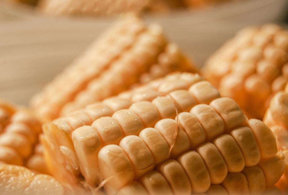 corn pap.jpg