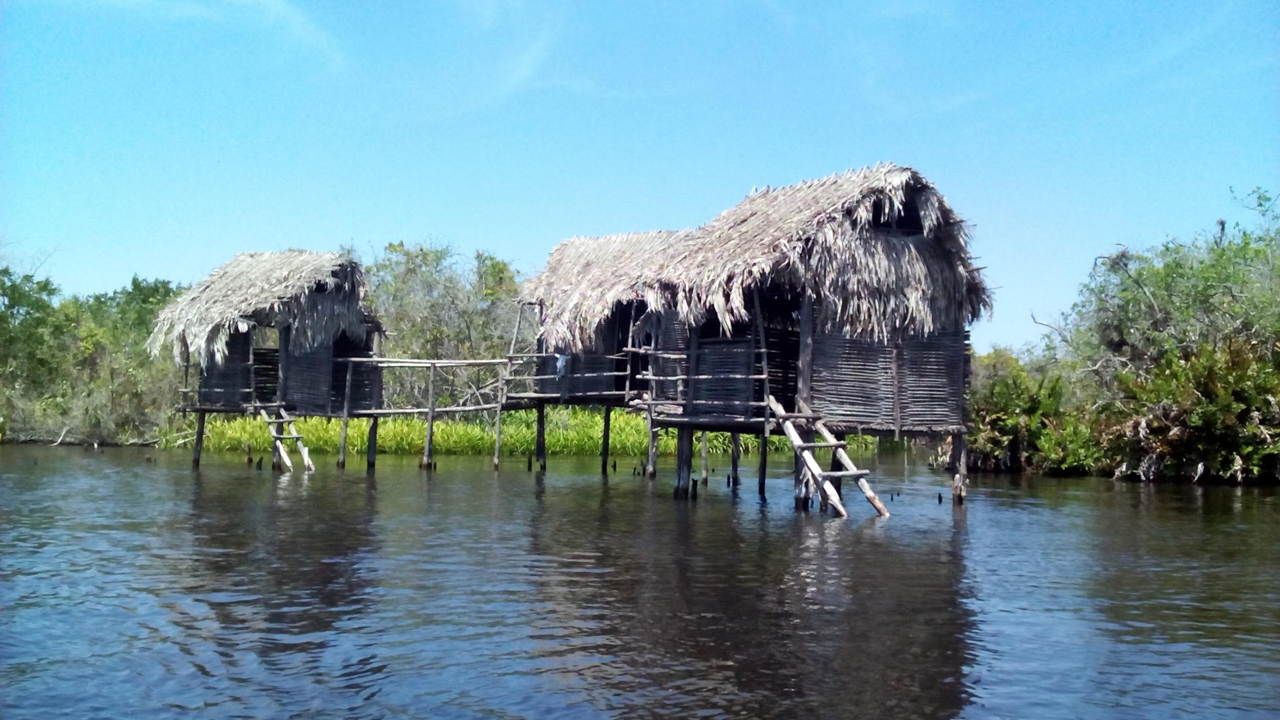 Tovara (Crocodile Sanctuary)