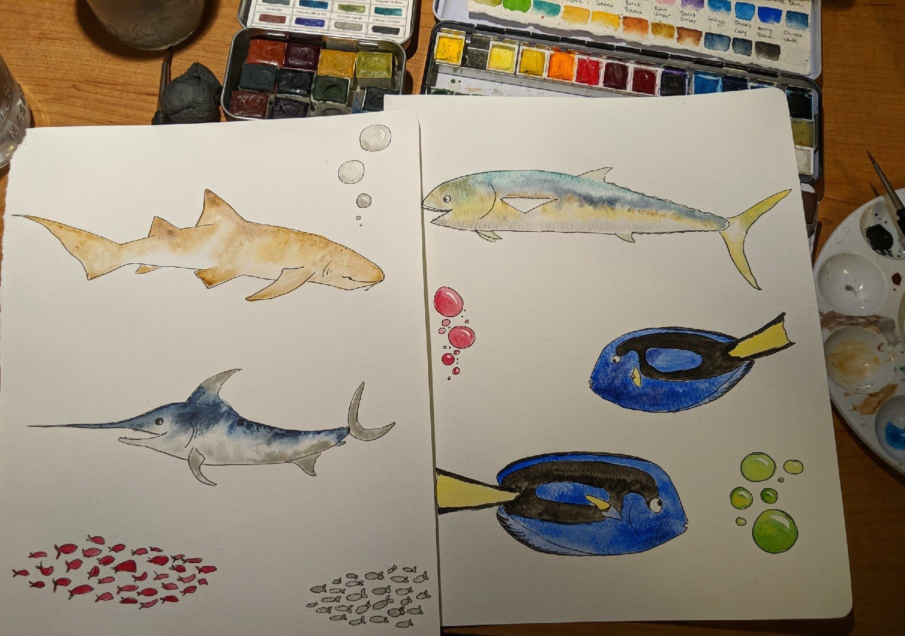 Illustrated video for NPS: Today I'm in the studio for the National Park Service filming another public service announcement about how to fish smart and be healthy. You can watch the other  finished PSA's here.