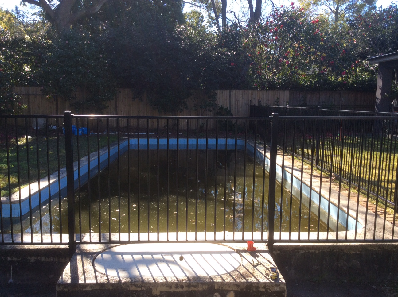10 Halcyon Av Wahroonga - Pool before renovation.jpg