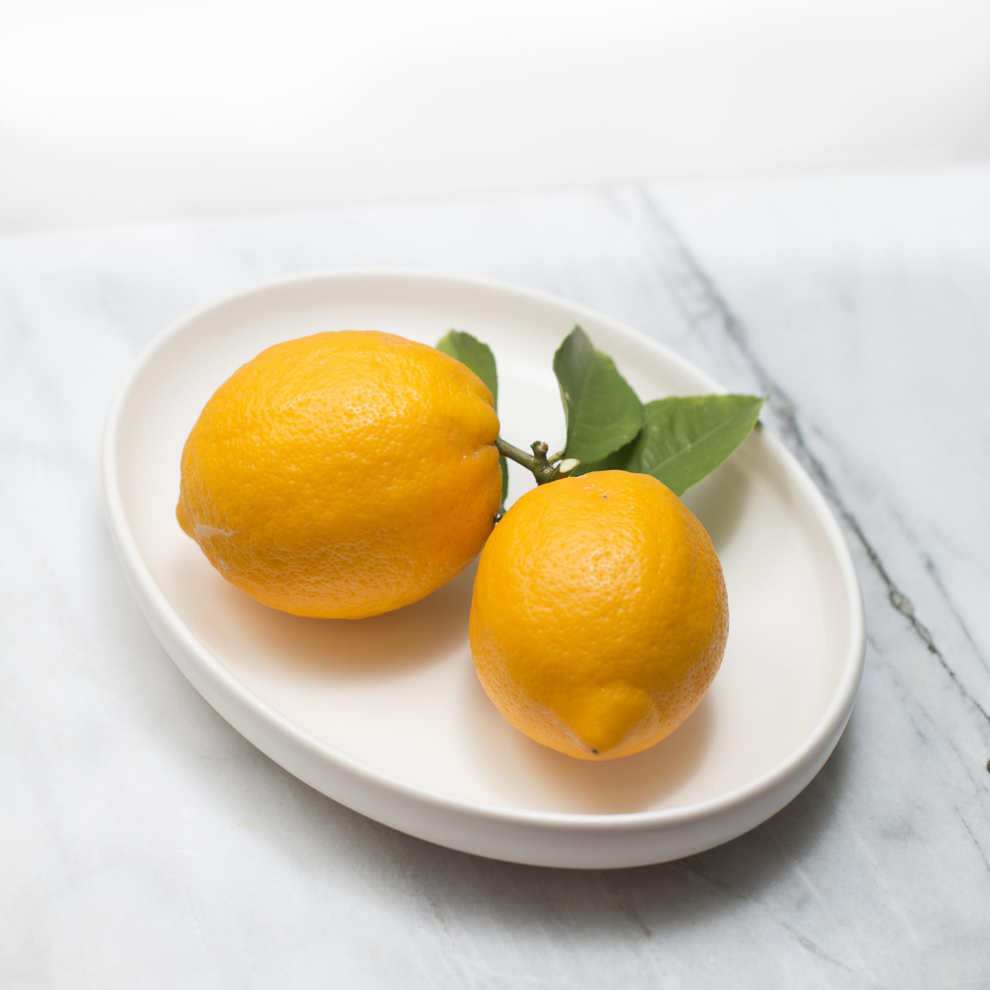 plate + myer lemons