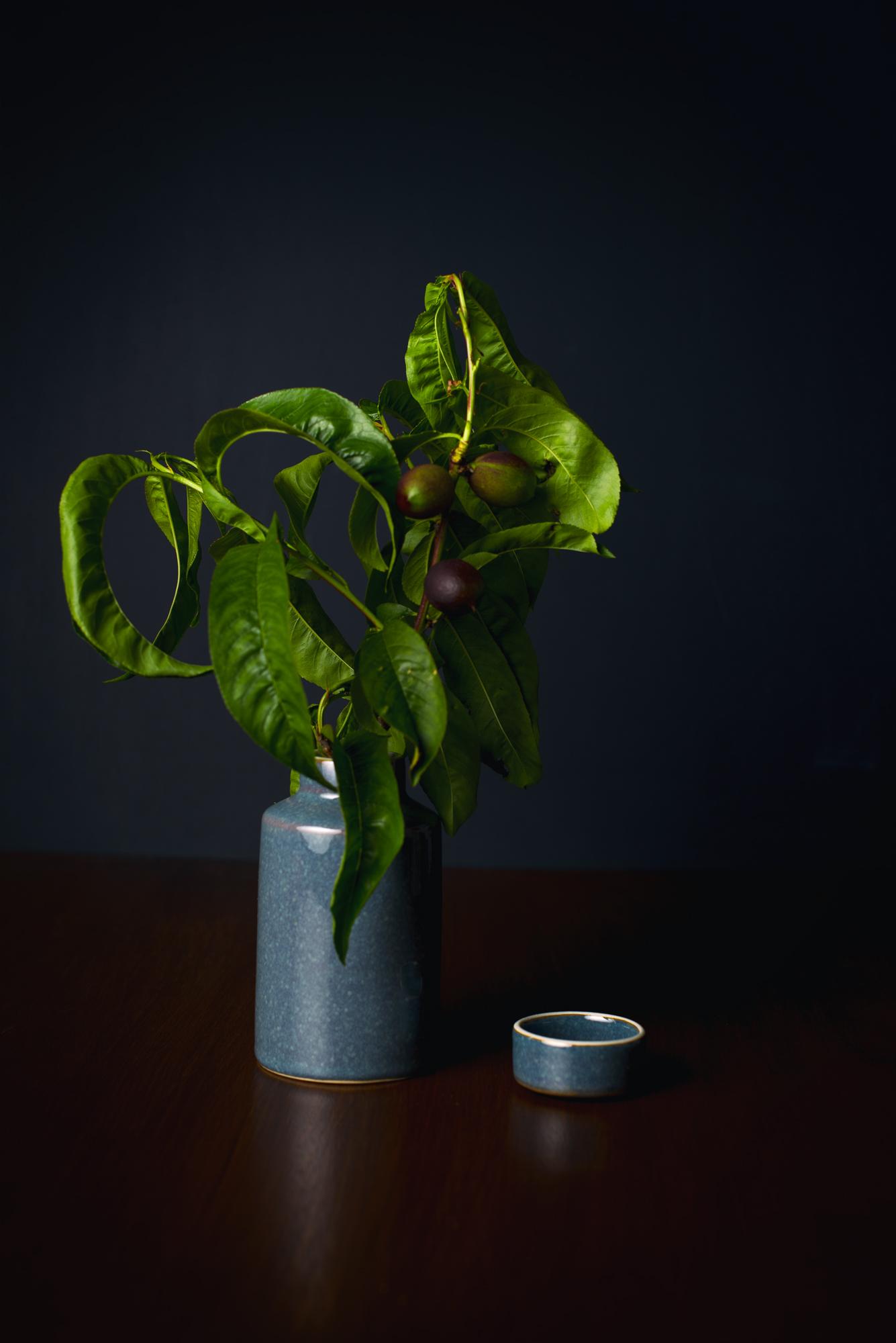 Plum + Vase