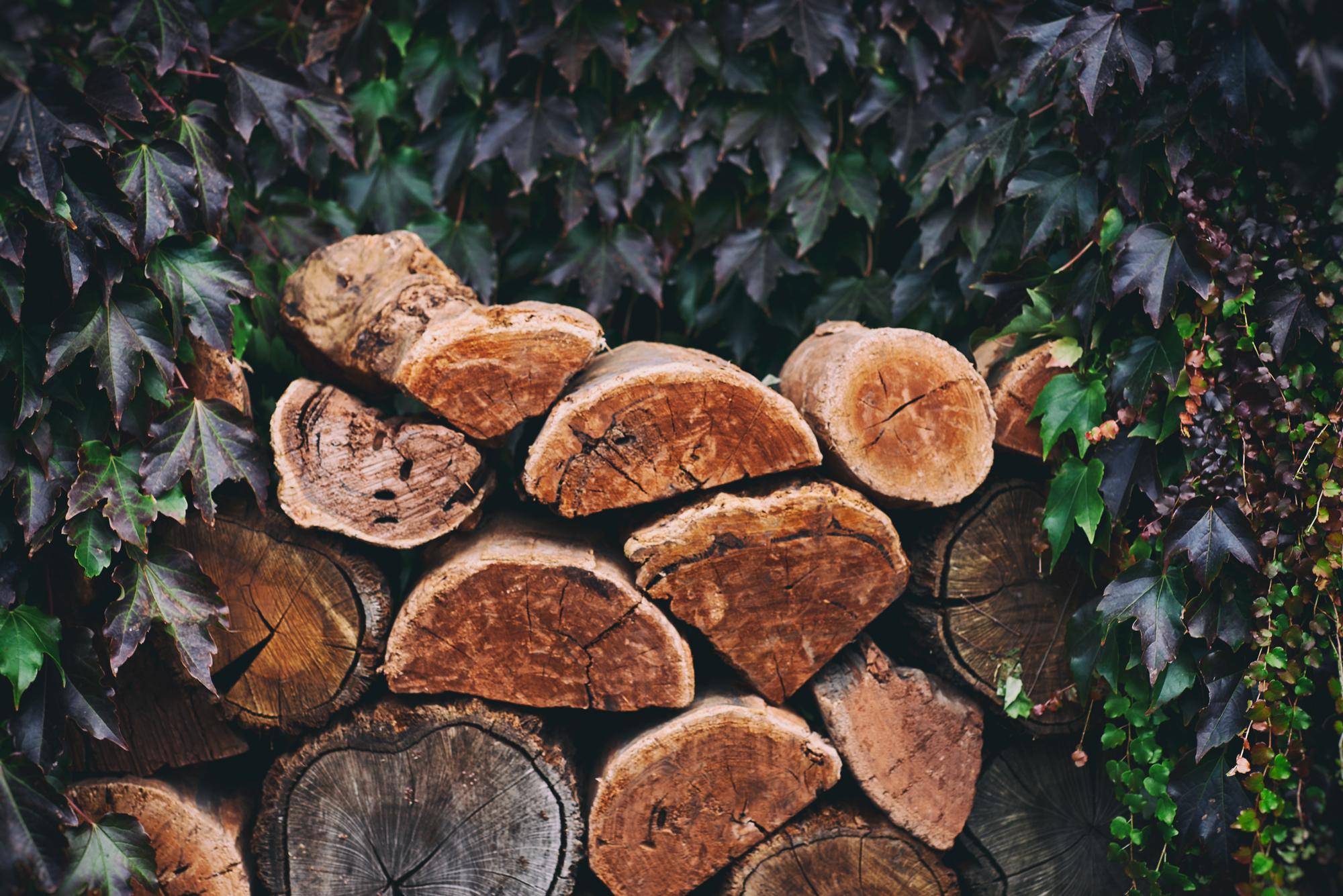wood-stack.jpg
