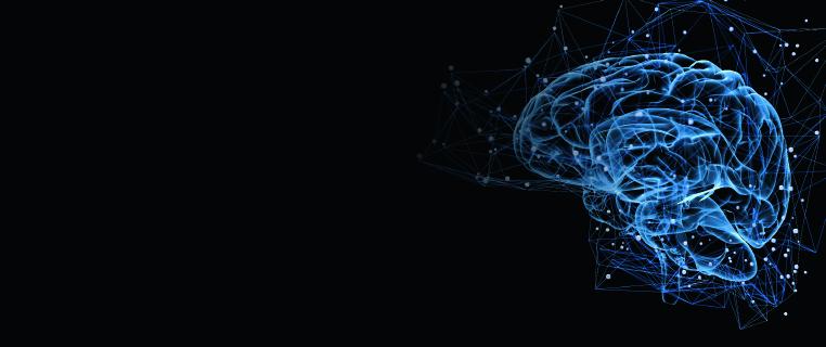Neuroscience-Header.jpg
