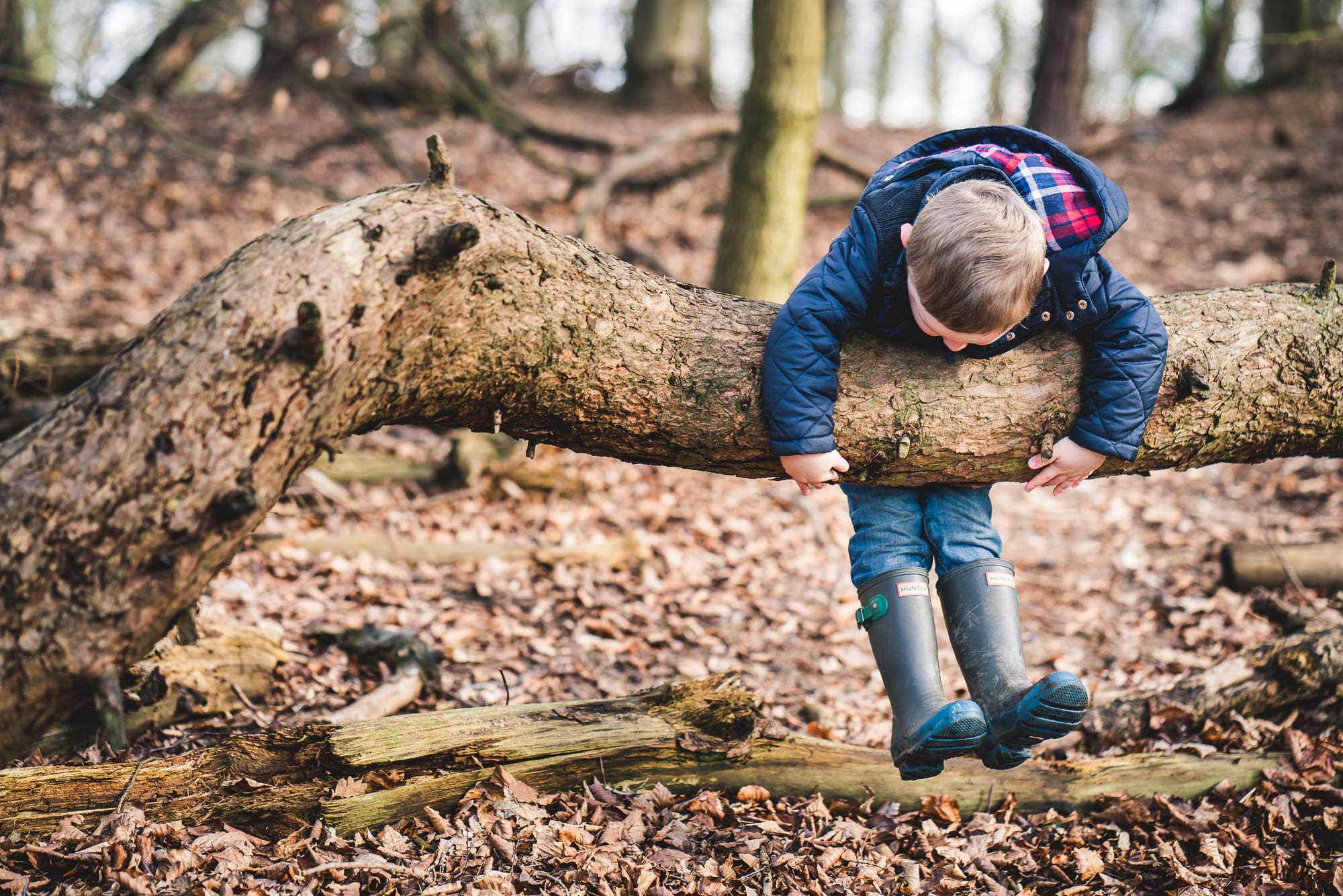 chicksands wood campton plantation bedfordshire family shoot-1038.jpg