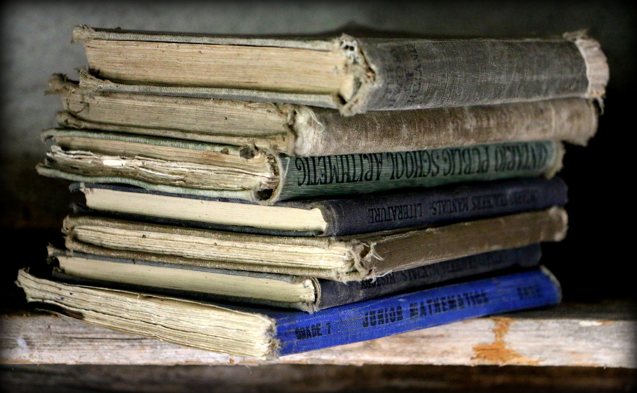 Old School textbooks by Rina Pitucci