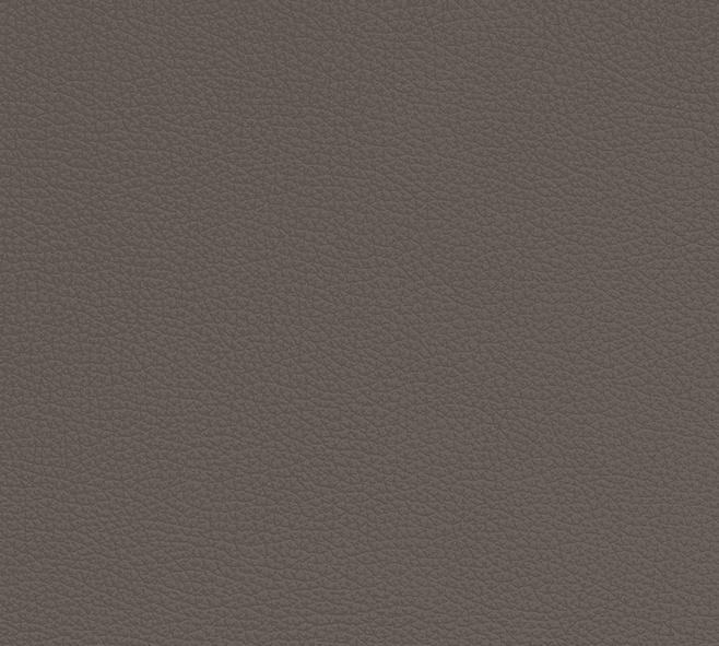 Grey 1585