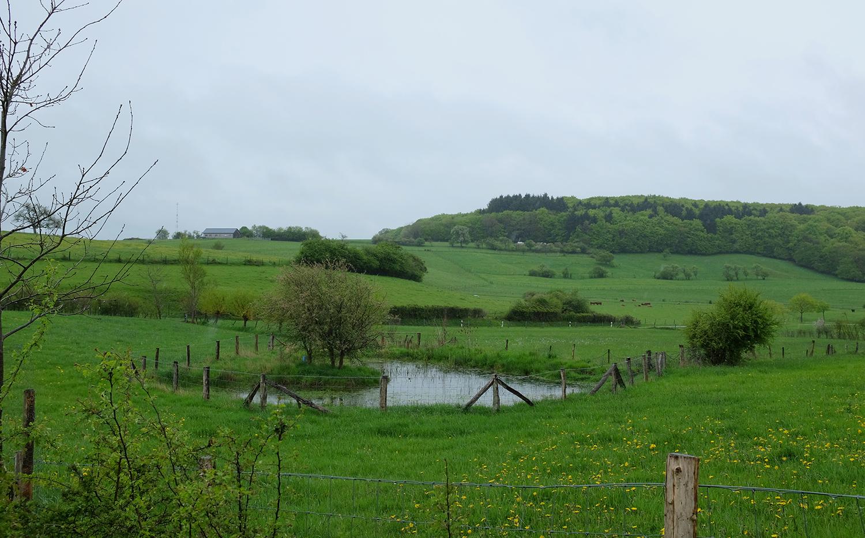 Pond Heckefeld, Godbrange