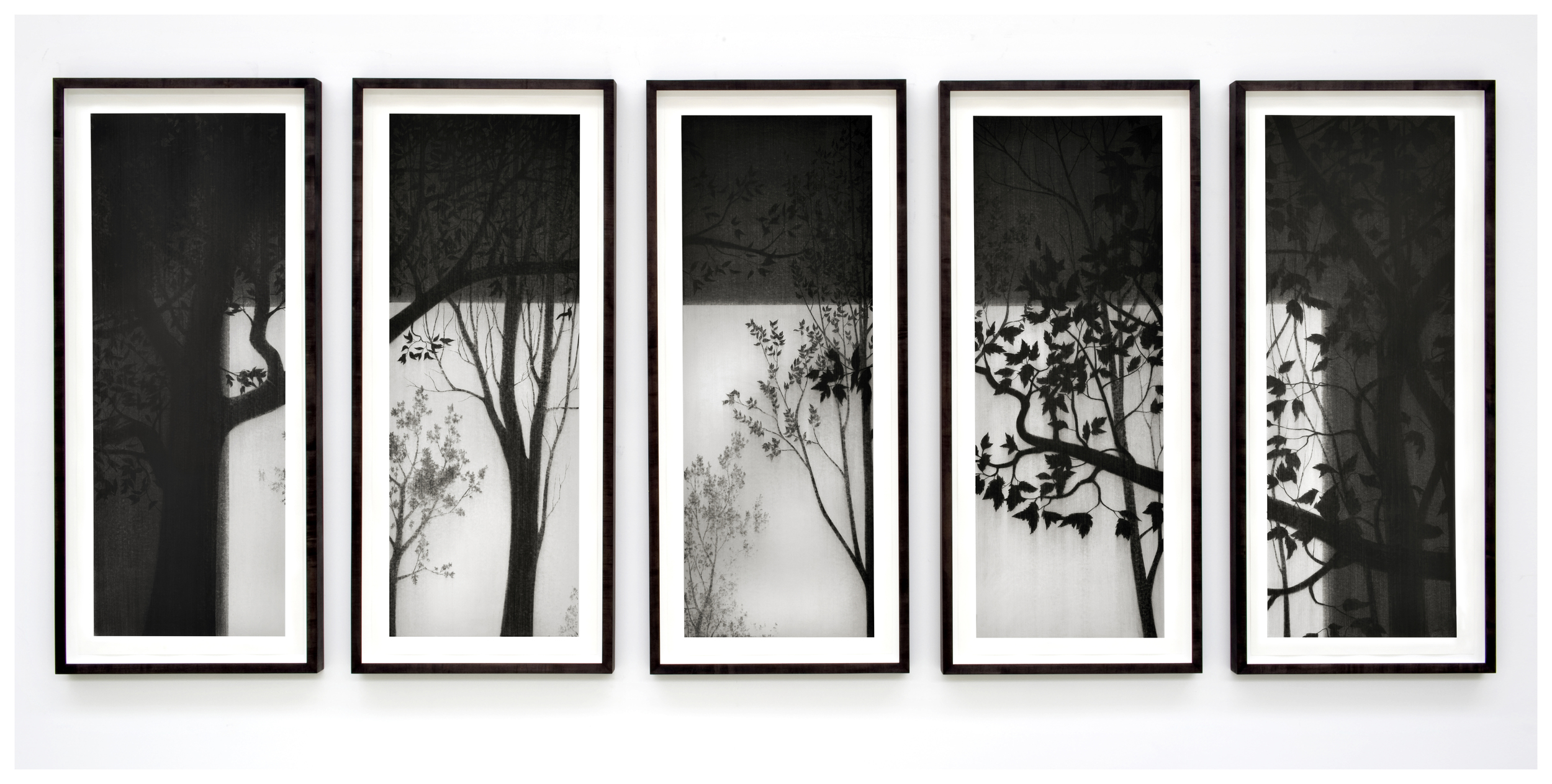 Untitled. 2011 . Charcoal on paper. 175x415cm