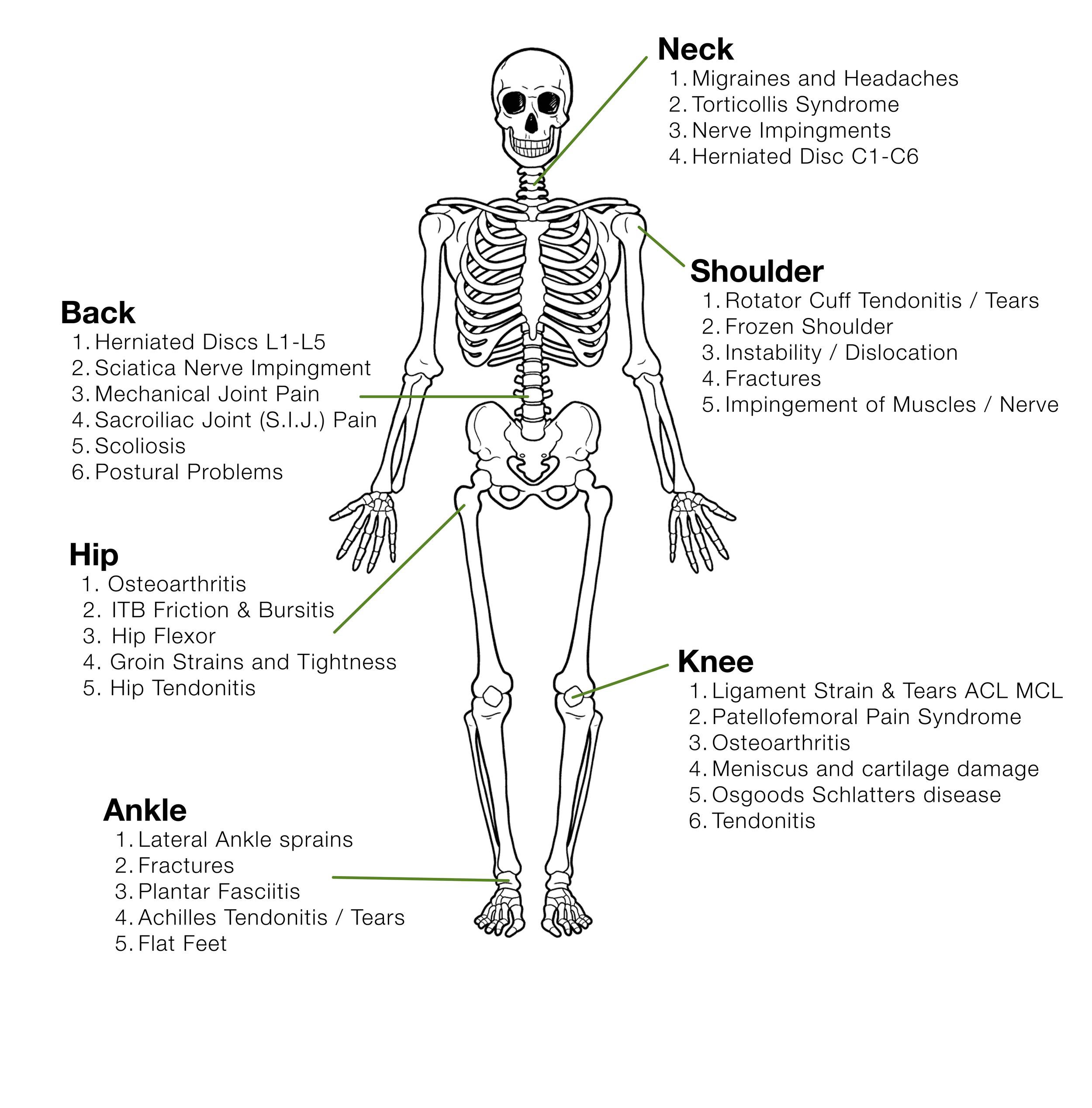 skeleton-omactive