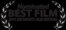 ZGI Best Film Nom.png
