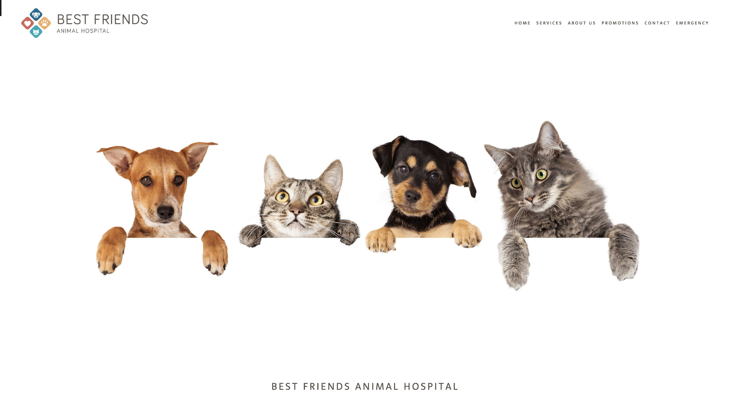 Best Friends Animal Hospital