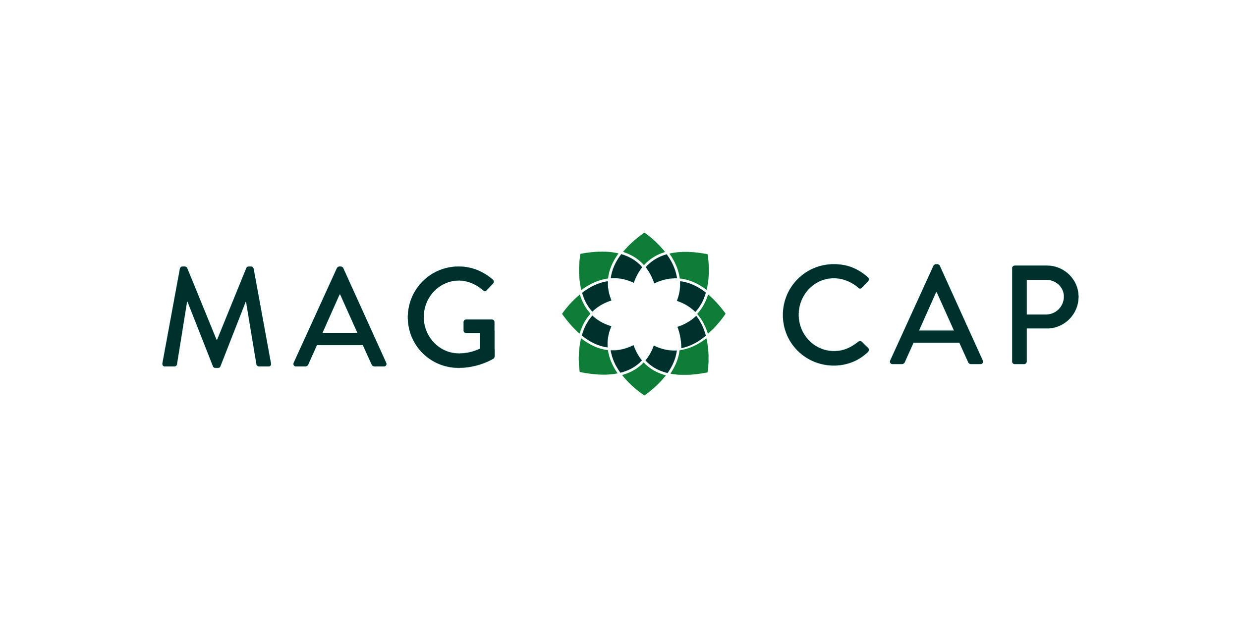 MagCapColor.jpg