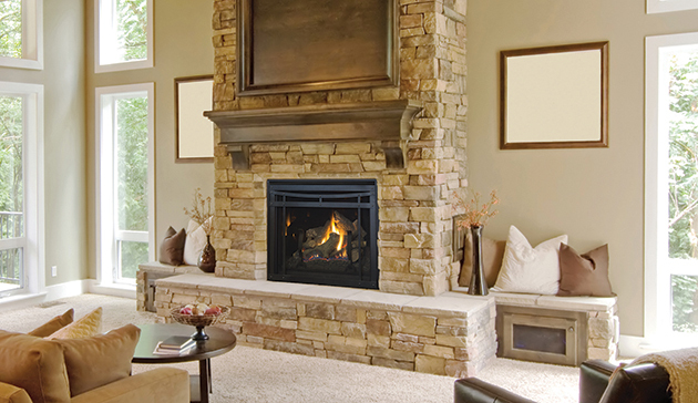 Astria Envy   Traditional Fireplace