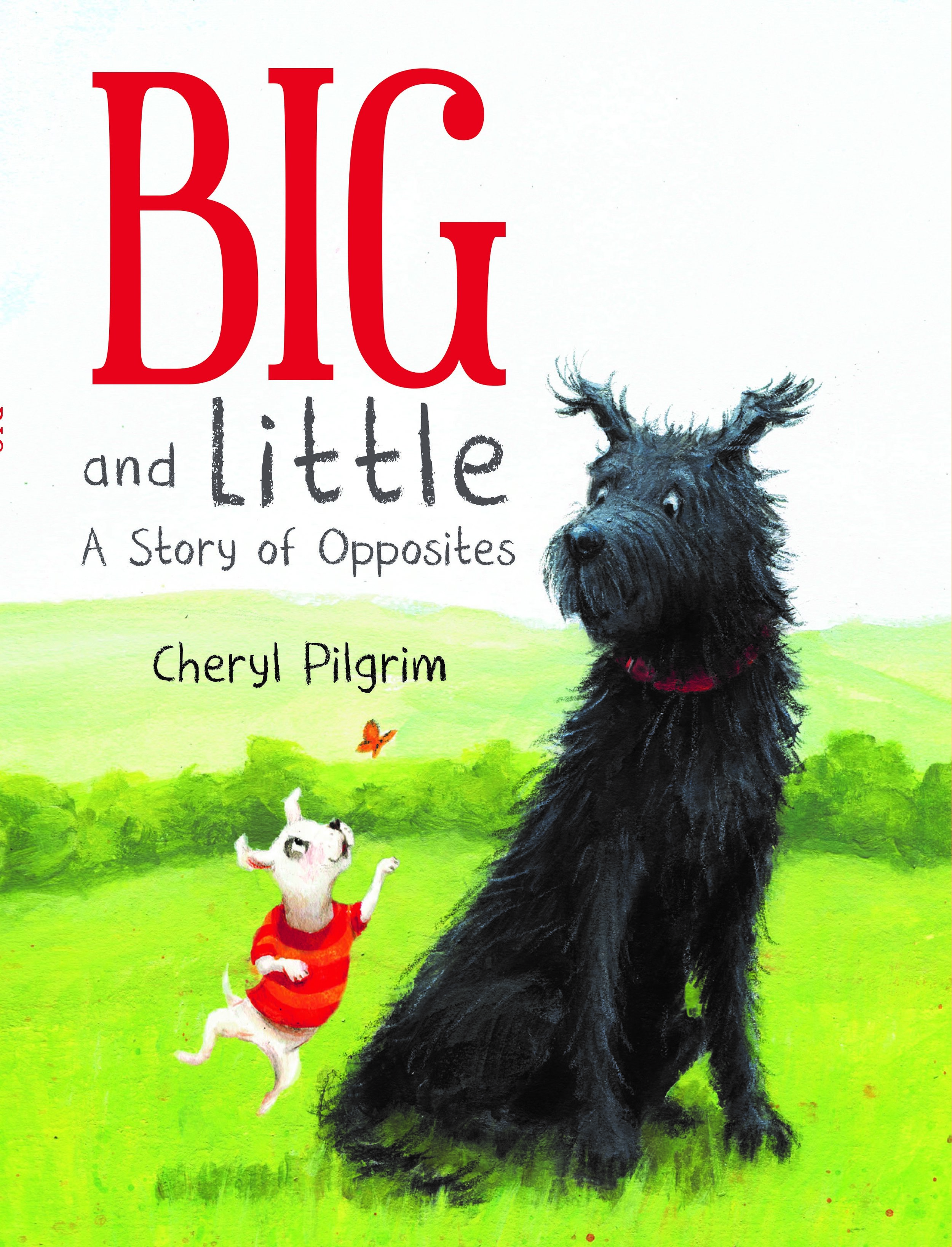 pilgrim_big and little cover.jpg
