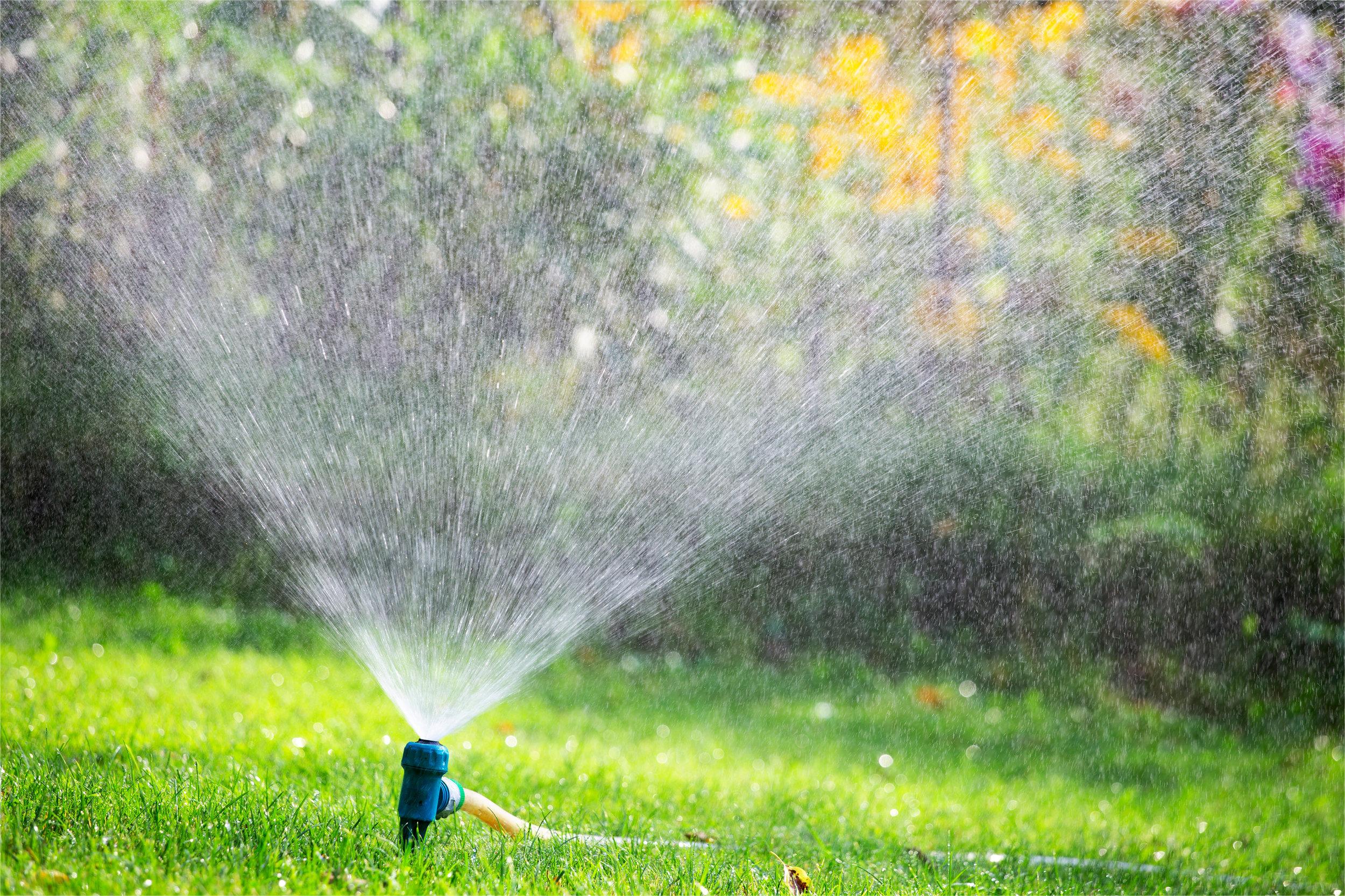Sprinkler watering lawn in garden
