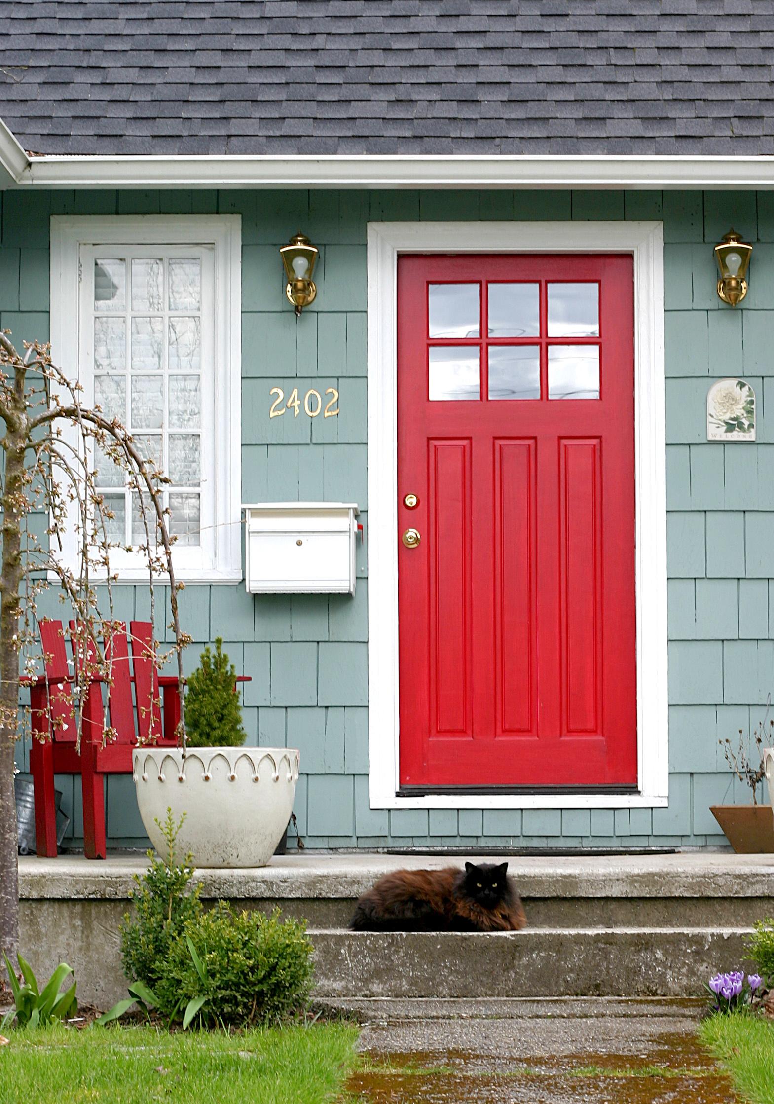 red door and cat