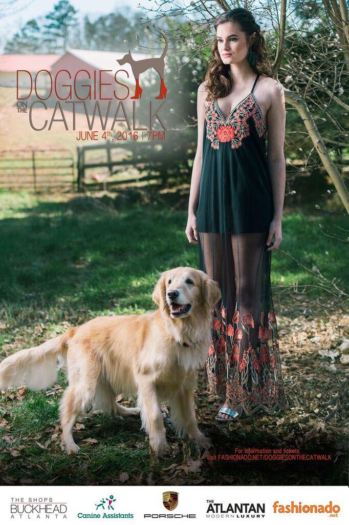 doggies on the catwalk fashionado
