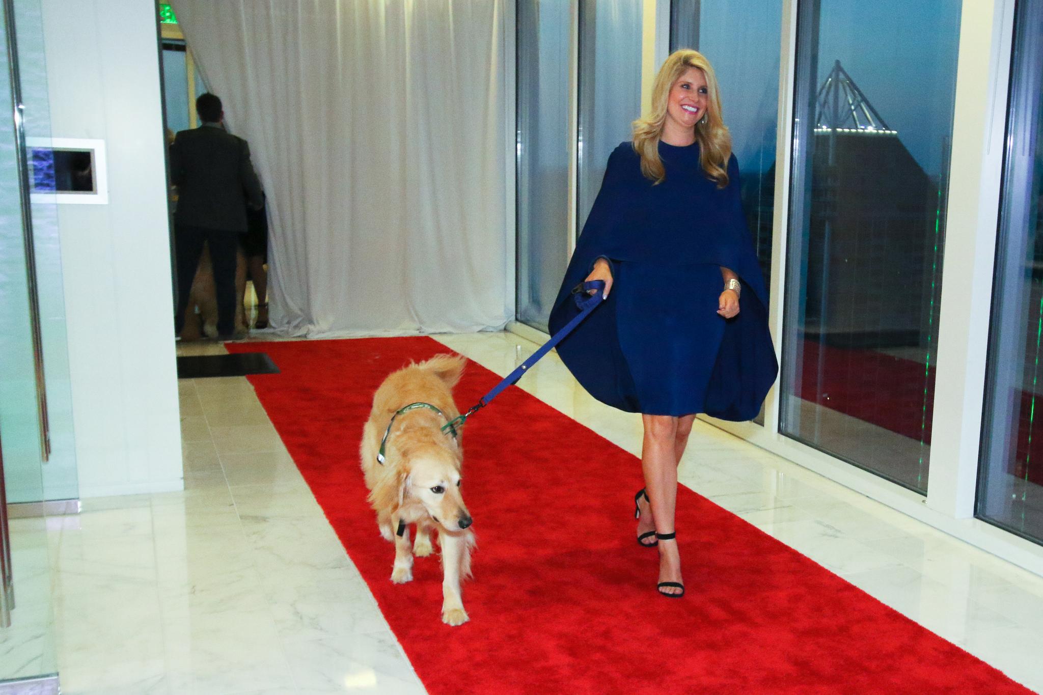 doggies on the catwalk 2018
