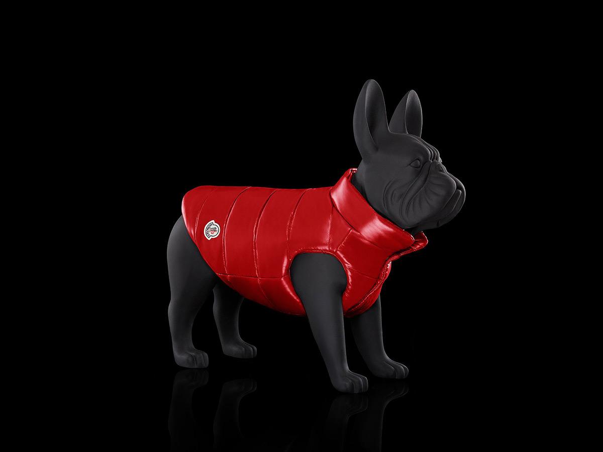 MONCLER POLDO DOG COUTURE FW18