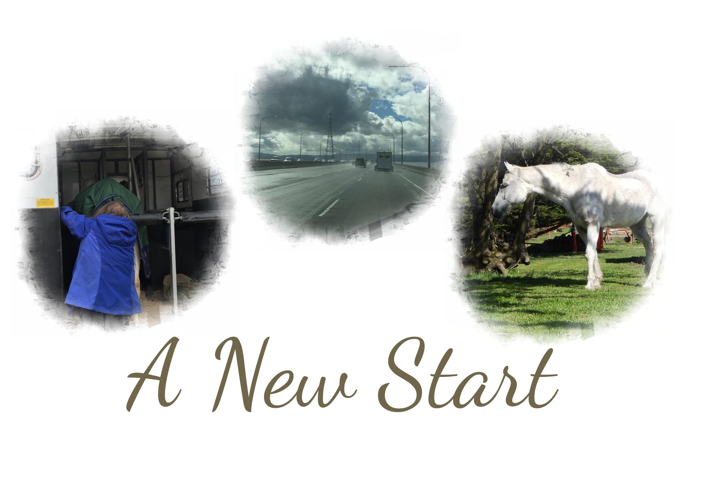 FotoJet A new Start.jpg