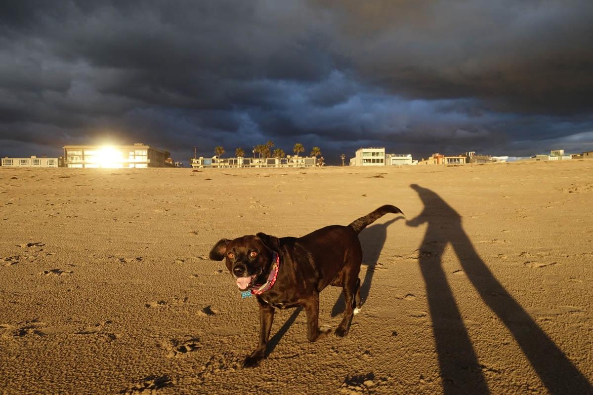 Zico on the beach