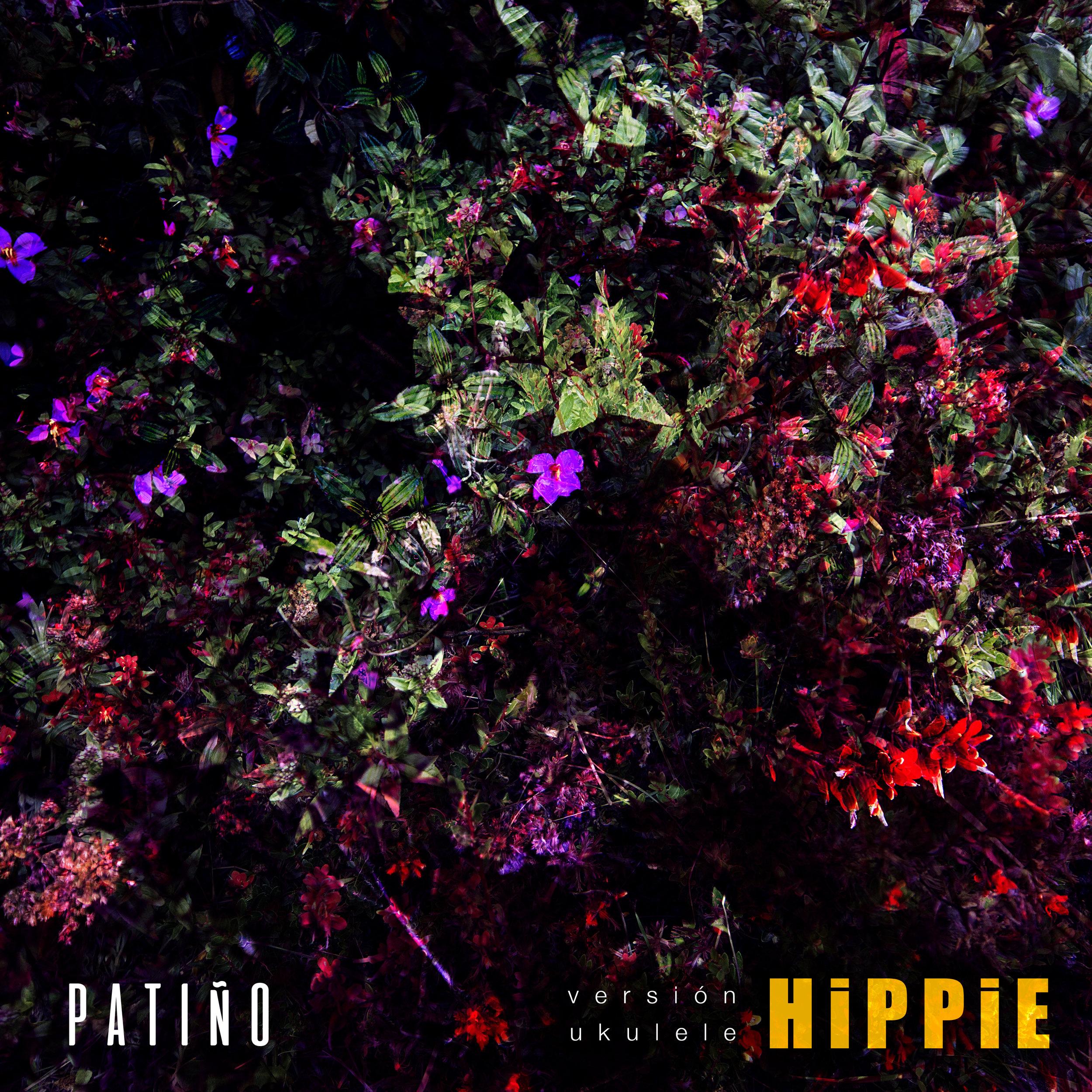 hippiesencillo-portada.jpg