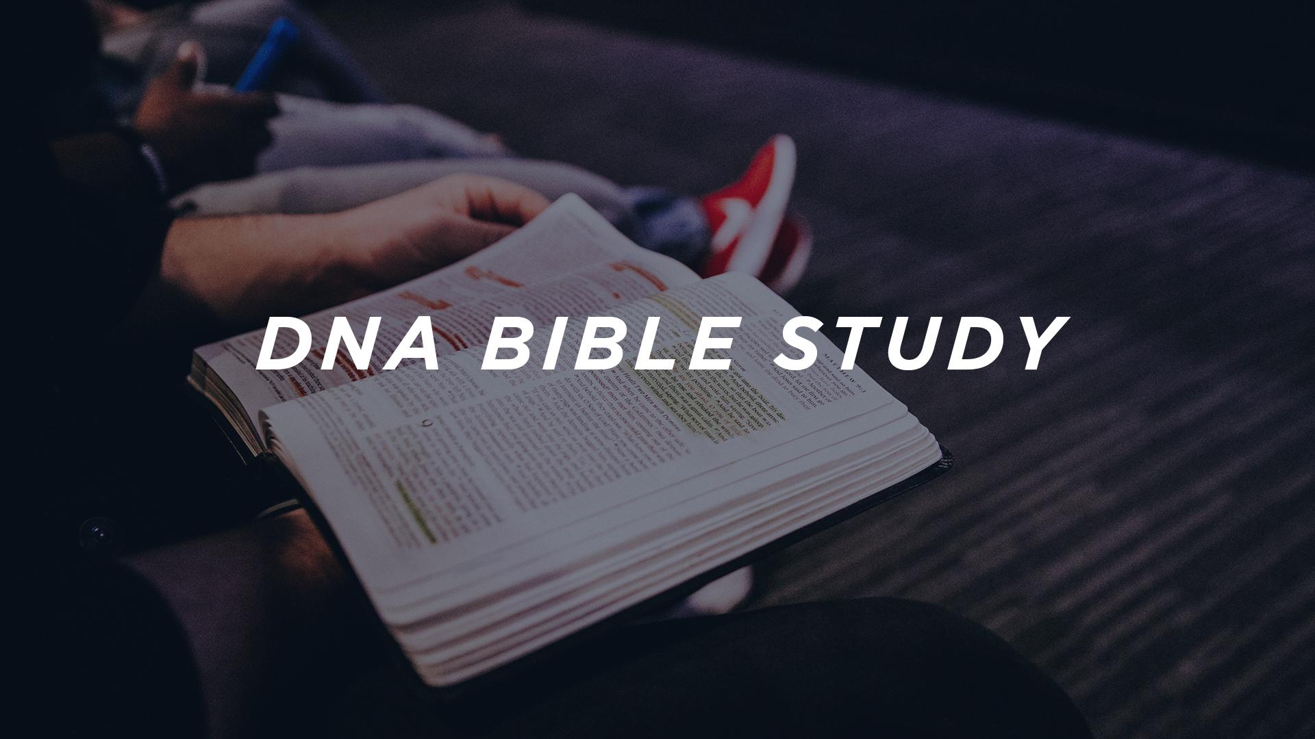 DNA-bible-study d.jpg