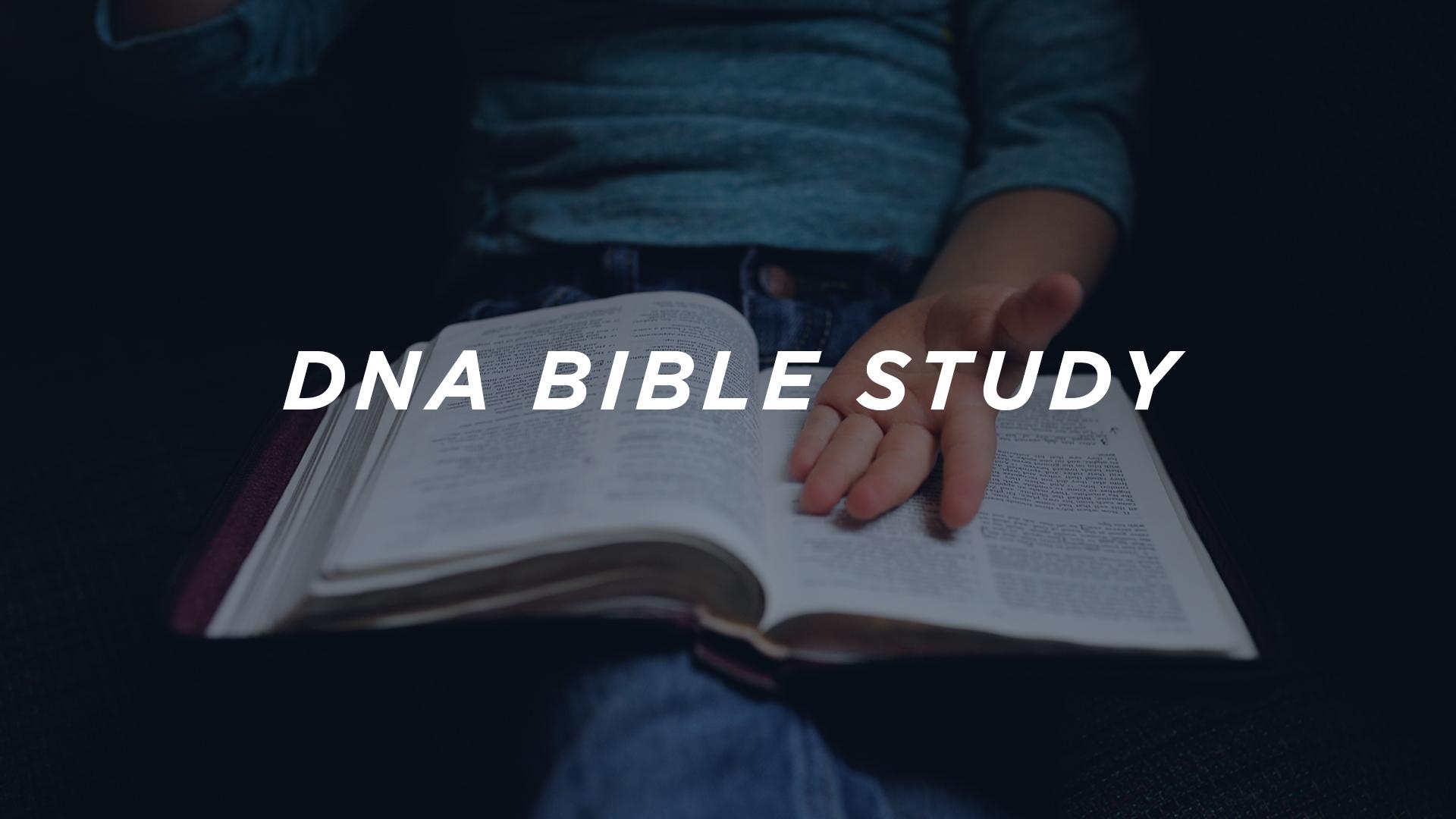 DNA-bible-study c.jpg