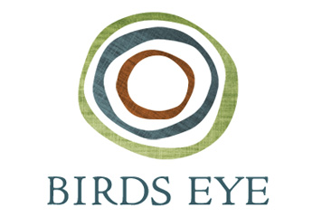 """Birds Eye Business Planning  needed content for its new website. Working closely with the founder, I wrote copy for the home page, About page, the """"Who We Are"""" intro, and four """"What We Offer"""" pages."""
