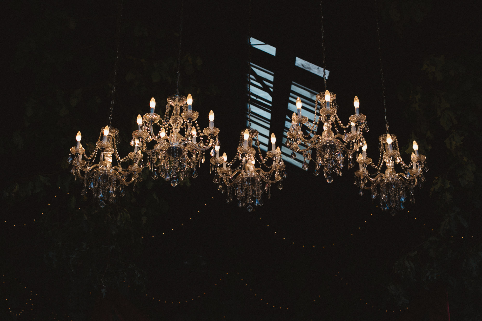 Stunning chandeliers at the NP Event Space, wedding photography by Britt DeZeeuw.